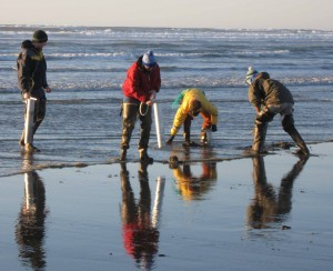 Klipsan Beach - Ocean Park razor clamming - vacation rentals