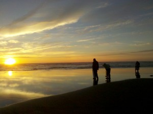 Evening tide clam digging - Long Beach Peninsula