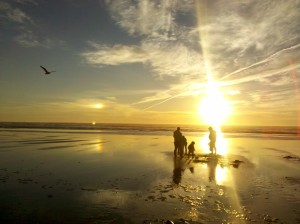 Razor Clam Digging Dates Long Beach Peninsula